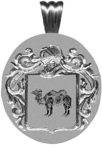 #71 in silver for Camel