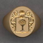 #10 for Finnarty