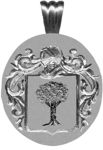 #71 in silver for Finnarty