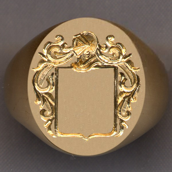 How a ring would look with a blank shield.