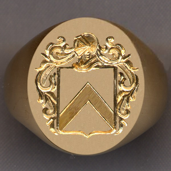 How a ring would look with a shield divided by a chevron.